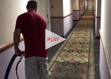 Carpet Cleaning Raleigh Nc Amp Cary Wake Forest Carpet